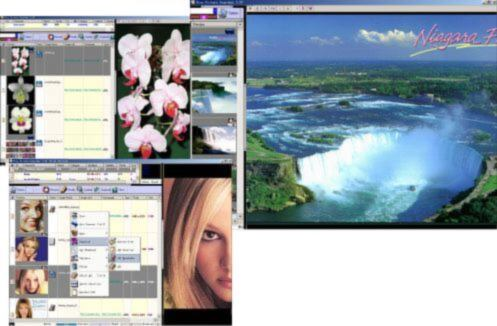 Picture finder,  image downloader, pic grabb:  search and download images on web